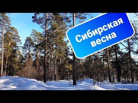Апрельская капель / Приход весны в Сибири / Красивые слова о весне