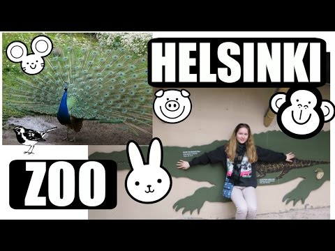 Helsinki Zoo ● Korkeasaari | KatChats