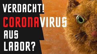 Woher stammt das Coronavirus? Eine Katze spekuliert.