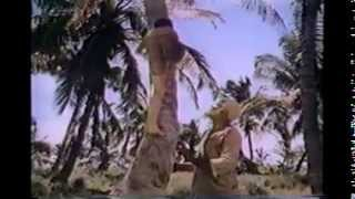 The Cay 1974 Full Complete TV Movie HQ