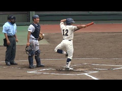 野球の試合中に起きた事件・事故・珍プレー 球場にハチ5000匹で中止に。話題になった噂の代打少年。プロ野球で反則アウト?