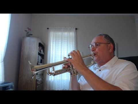 PANZERLIED - TRUMPET (BATTLE OF THE BULGE MOVIE)