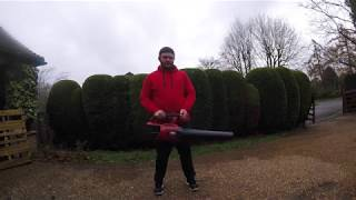 Toro powerplex leaf blower review. 51134