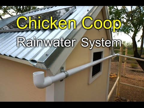 chicken-coop-rainwater-harvesting-system---how-to