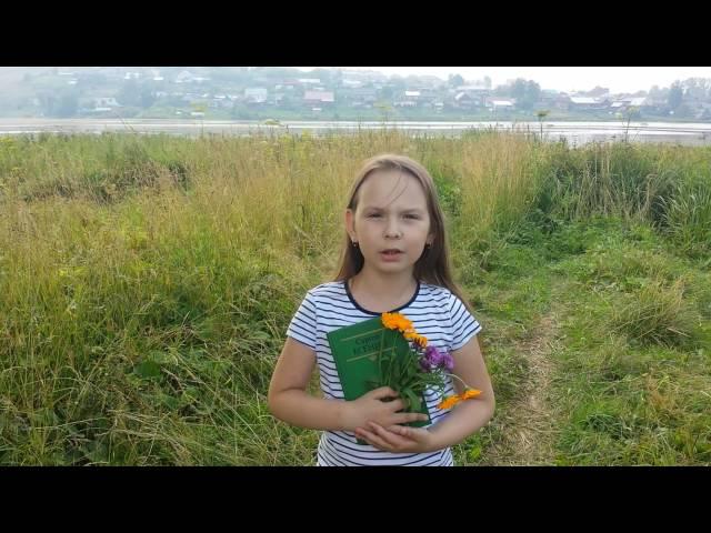 Изображение предпросмотра прочтения – АлександраКочнева читает произведение «Топи да болота...» С.А.Есенина