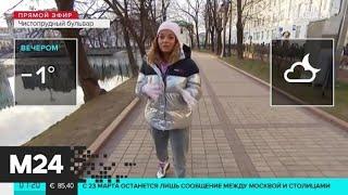 """""""Утро"""": переменная облачность ожидается в столице 23 марта - Москва 24"""