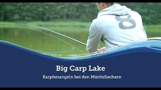 Big Carp Lake - Karpfenangeln bei den Müritzfischern :: Müritzfischer