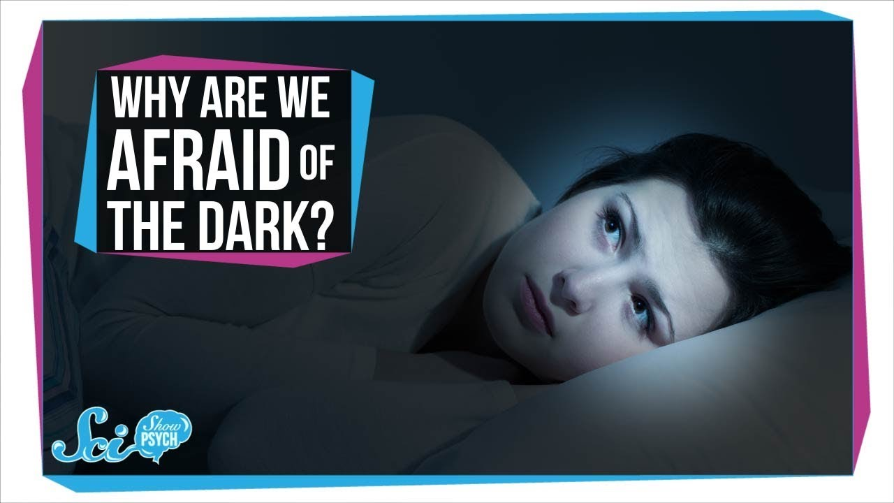 Download Why Are We Afraid of the Dark?