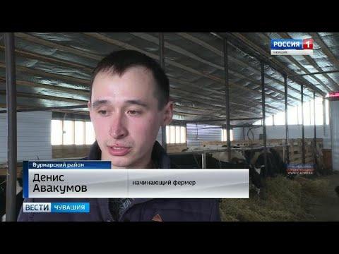 Студент Чувашской сельхозакадемии выиграл грант и стал успешным руководителем собственной фермы