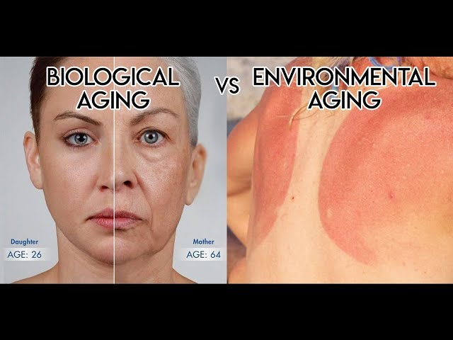 Biological vs Environmental