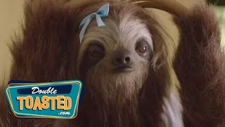 THE STONER SLOTH PSA - Double Toasted Highlight
