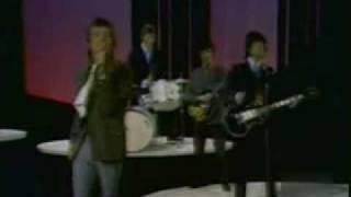 The Rolling Stones - Paint it Black (En Vivo)