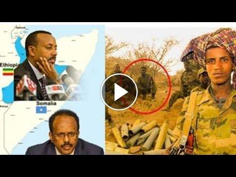 Somalia media Wararkii ugu dambeeyay Dagaalka Itoobiya oo laga cabsi qabo inuu isku...