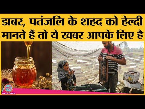 German Lab का बड़ा दावा  - India की 13 में से 10 brands का honey है मिलावटी |Dabur |Patanjali