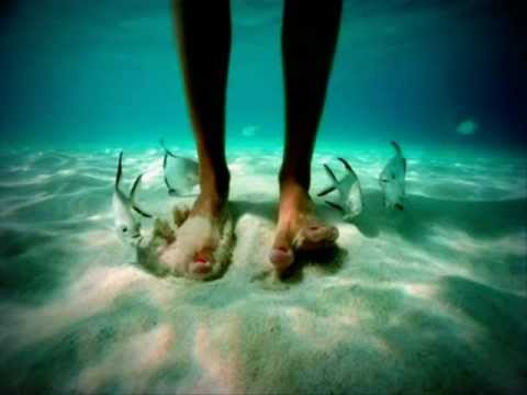 David Quinlan - Águas profundas    || .mp4