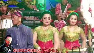 PERCIL Ngamok Disaat Live Di Desa Slorok Malang - 22 November 2017