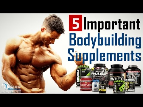 Top 5 essential & best bodybuilding supplements to gain muscle fast | Fitness Rockers