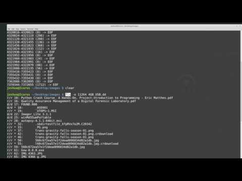 Beginner Introduction to The Sleuth Kit (command line)