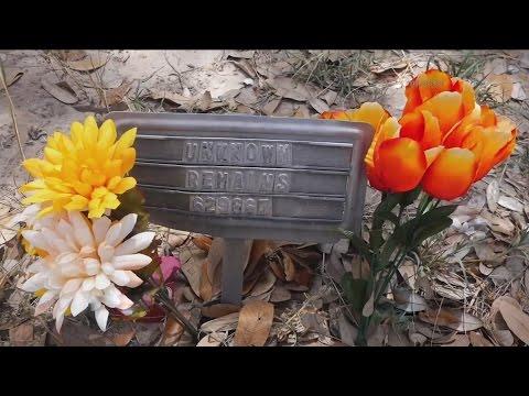 Una mujer se pasa hora en el cementerio poniendo flores a tumbas de desconocidos