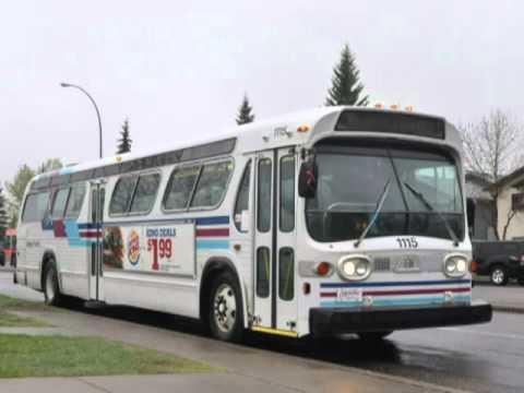 Calgary Transit 1982 General Motors New Look T6h 5307n