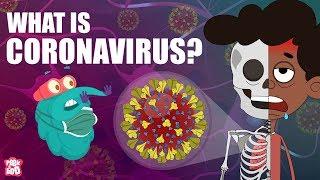 CORONAVIRUS | What Is Coronavirus? | Coronavirus Outbreak | The Dr Binocs Show | Peekaboo Kidz