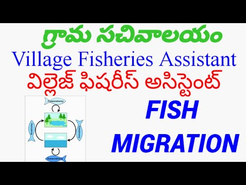 Fish Migration//Definition//Types//village Fisheries Assistant//FDO&VFA.