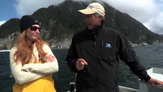 Wild Oceans - Alaska