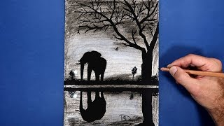 Drawing Elephant at sunset  Black and white