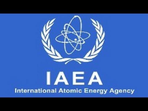 Did IAEA Fudge the Numbers?