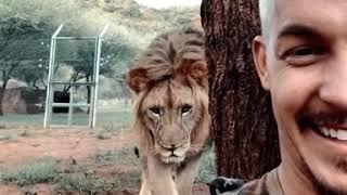 Lion Scares Dean Schneider