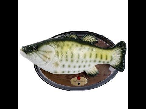 Поющая рыба .подарок ! - YouTube