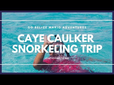 Caye Caulker Snorkeling Trip with Go Belize Mario Adventures