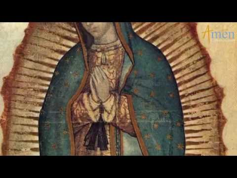 Nuestra Señora de Guadalupe. Dr. Ricardo Castañón Gómez