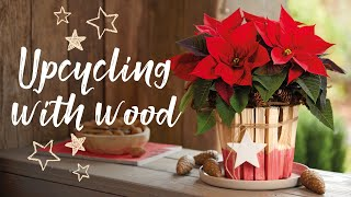 DIY last-minute Christmas present with poinsettias: upcycling with wood