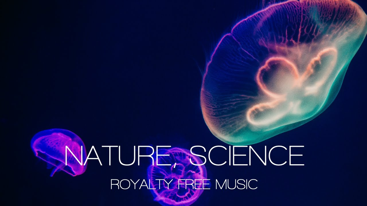 science nature background music documentary