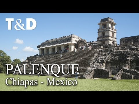 Palenque Tourist Guide - Mexico Video Guide - Travel & Disco