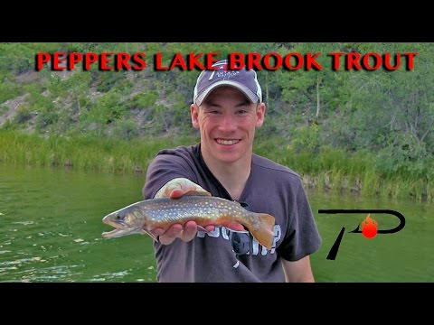 Trout Fishing Alberta's Peppers Lake