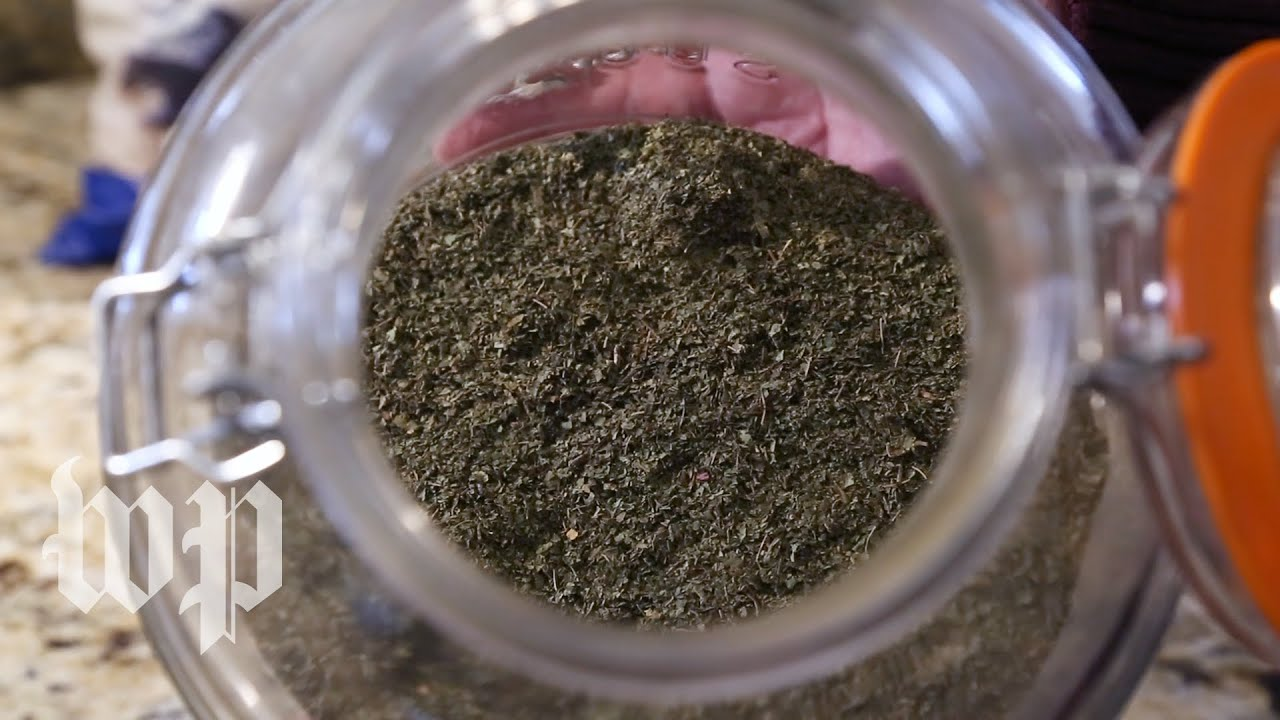 What is Kratom? Find out why the FDA says this herb is an opioid