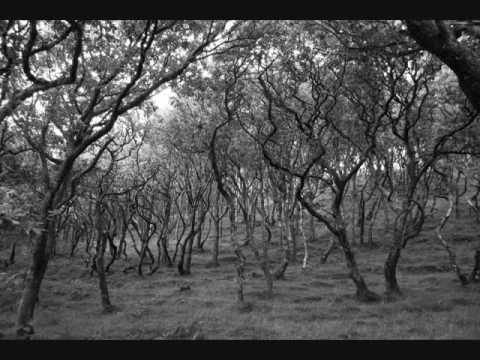 Клип Matt Uelmen - Tristram