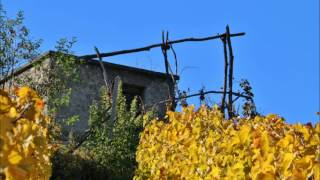 2015 ottobre :SAINT PIERRE (valle d'Aosta)