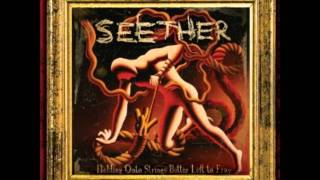 Watch Seether Dead Seeds video