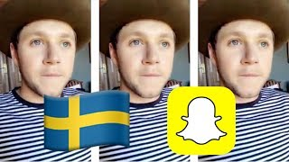 Niall Horan talks about Camila Cabello, first kiss, and more on Snapchat - Sweden 2017