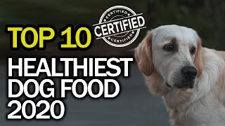 Best Healthy Dog Food (Top 10 in 2020) Natural Grain Free Healthiest Dog Food Brands
