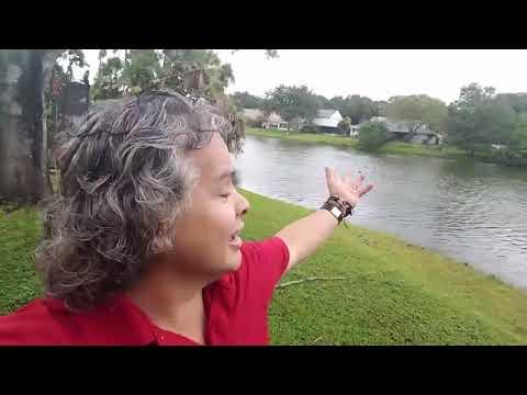 Hurricane Irma Tampa.Pr Erlei Lemes- New Image church