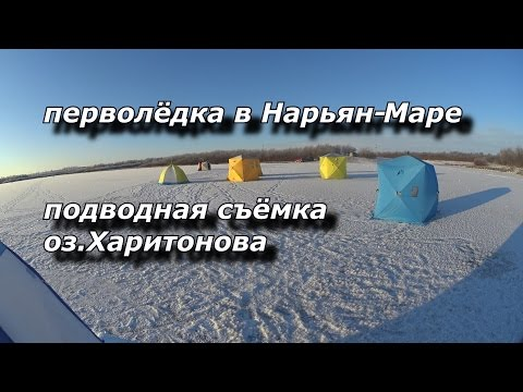 перволёдка в Нарьян Маре  подводная съёмка оз Харитонова
