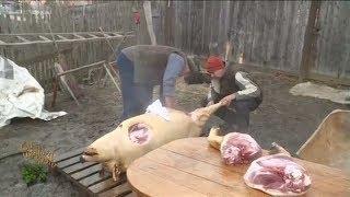Cu tigaia-n spate: taiatul porcului la Fildu de Sus, jud. Salaj