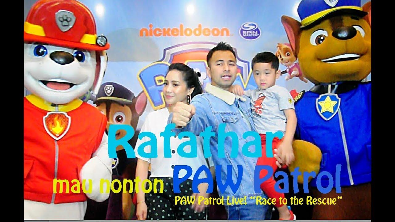 rafathar nonton paw patrol live  youtube