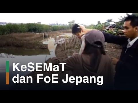 Survei Mangrove bersama BINTARI dan FoE Jepang