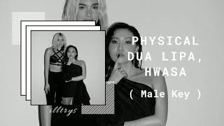 DUA LIPA FT. HWASA - 'PHYSICAL' (Male Version)