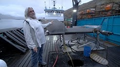 """Be The First To Tour Wild Bill's New Boat, """"Summer Bay"""""""